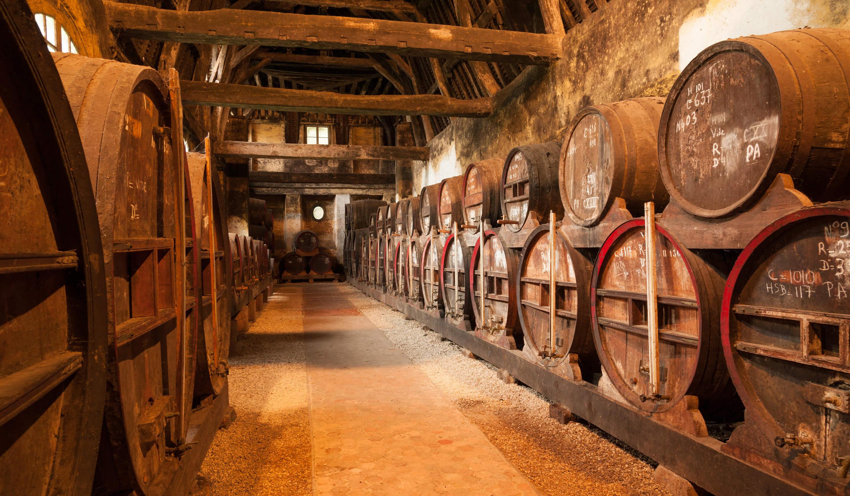 oak whisky barrels in storage